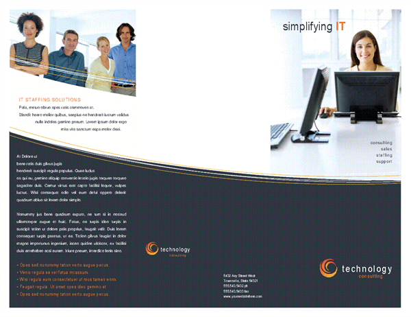 Technology business brochure (tri-fold)