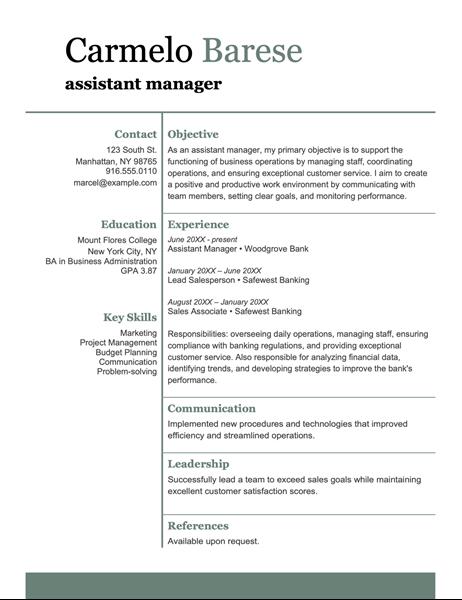 Basic modern resume