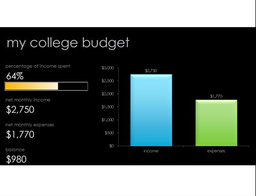 My college budget