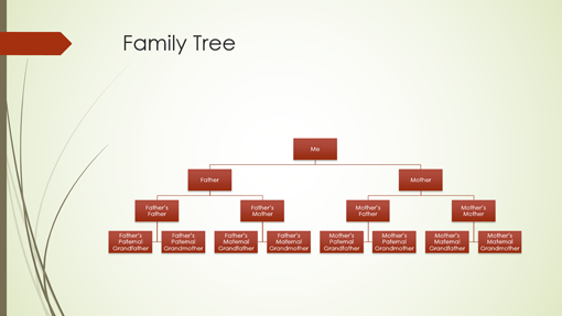 Diagrams for Family tree template word 2007
