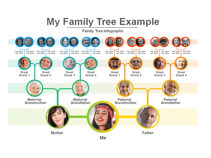 My family tree