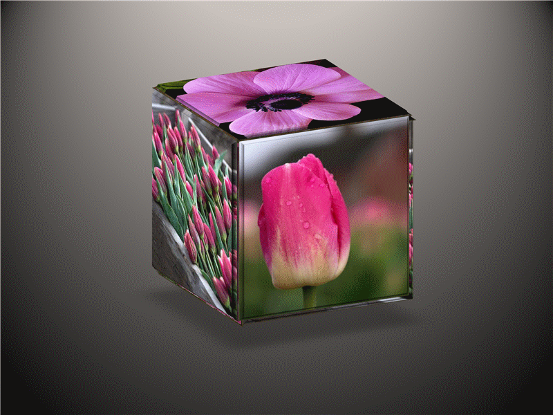 Animated 3-D cube with changing pictures for slide show