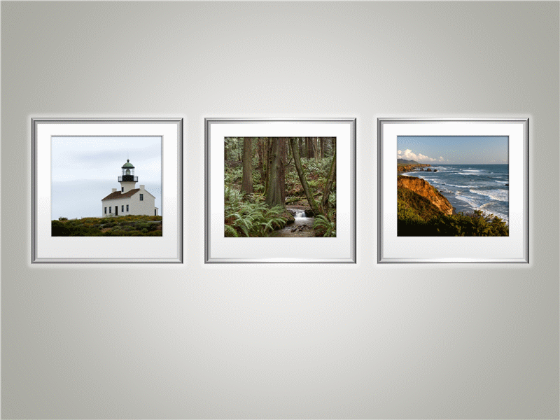 Picture trio with mat and frame