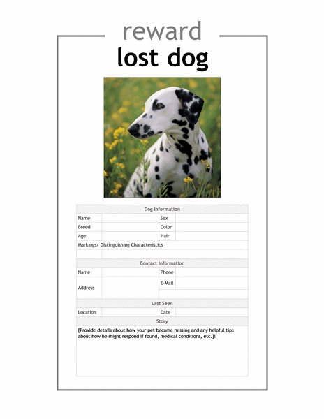 Lost pet flyer Office Templates – Lost Pet Flyer Maker
