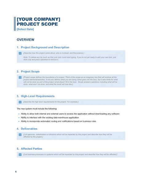 Project scope report (Business Blue design)