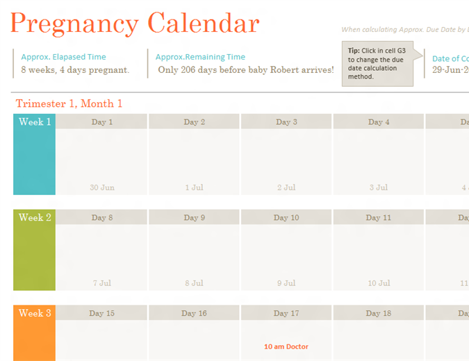 Pregnancy calendar - Office Templates
