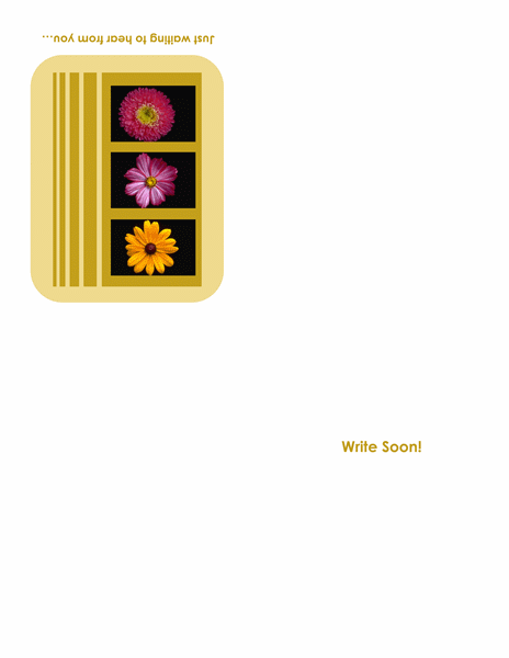 Write Soon greeting card (quarter-fold)