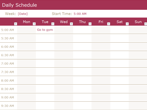Daily Schedule Template  Daily Weekly Schedule Template