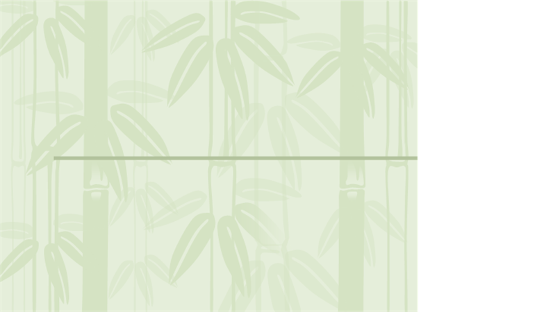 Bamboo 2 design template