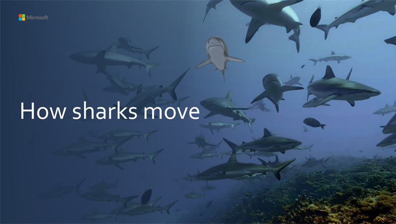 How sharks move 3D tutorial