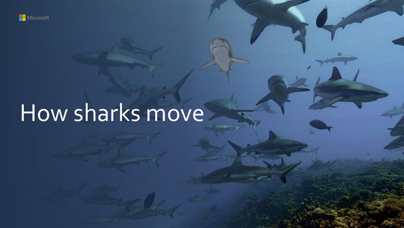 How sharks move 3D tutorial