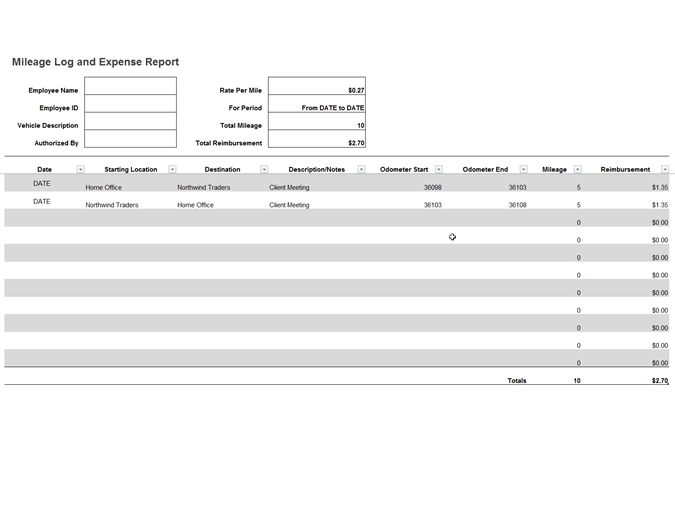 Mileage log and expenses report