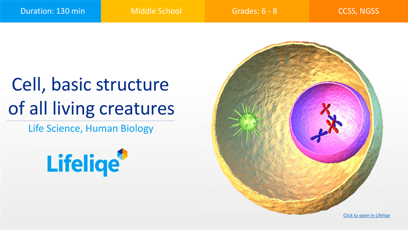 Cell, basic structure of all living creatures