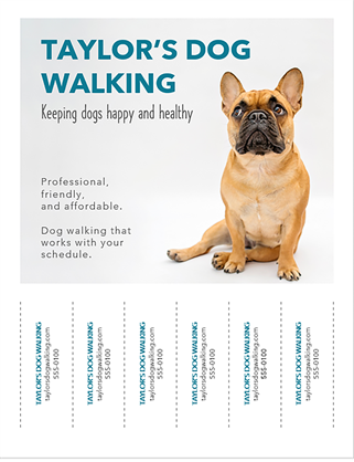 Dog walker flyer