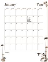 2017 12-month calendar (Sun-Sat)
