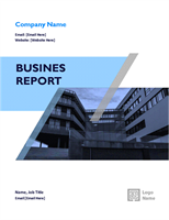 Business report (graphic design)