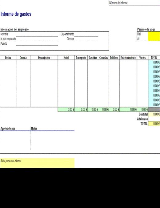 Informe de gastos de viaje 11