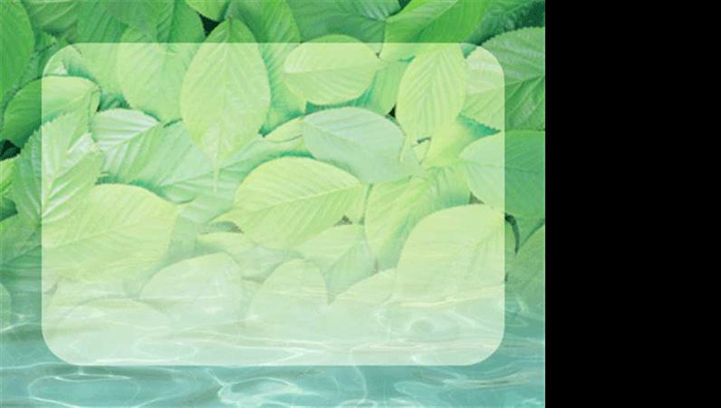 Plantilla de diseño de estanque