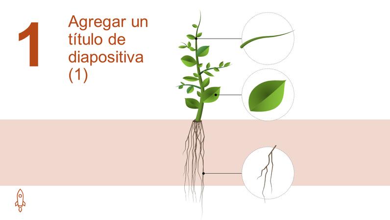 Gráfico animado de crecimiento de árbol