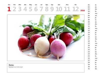 Calendario fotográfico del 2016