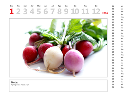 Calendario fotográfico de 2015