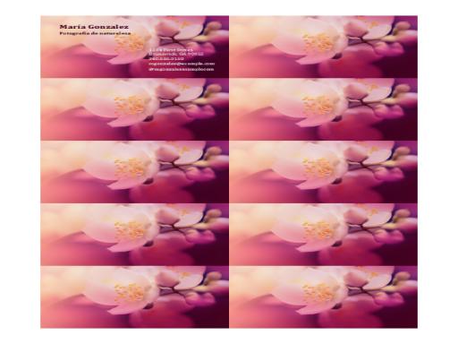 Tarjetas de presentación (imagen de flor)
