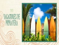 Álbum de fotos de vacaciones en primavera (diseño de playa, pantalla panorámica)