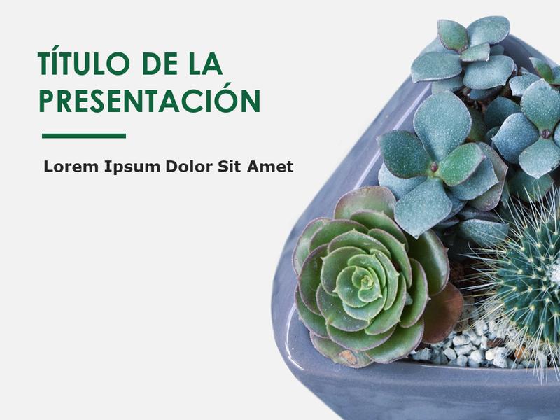 Diapositivas con diseño de botánica