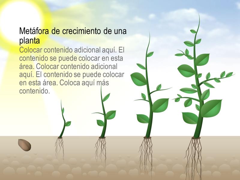 Gráfico de crecimiento de planta