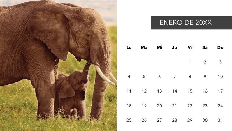 Calendario fotográfico de animales adorables