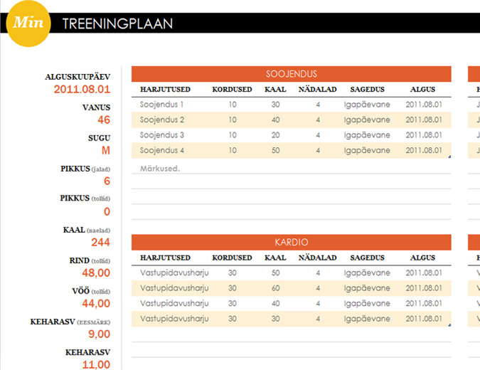 Treeningplaan