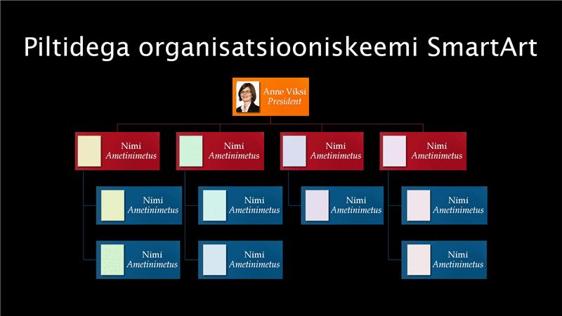 Piltidega organisatsiooniskeemi slaid (mitmevärviline mustal taustal), laiekraanvormingus