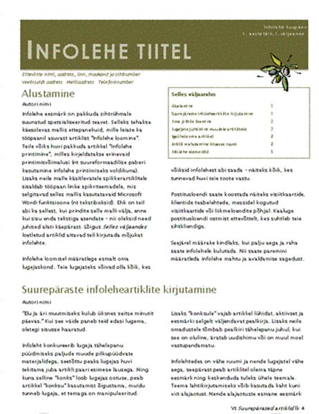 Ettevõtte infoleht (2 veergu, 6 lk, meiliga saatmiseks)
