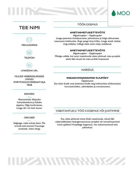 MOO kujundatud loominguline elulookirjeldus