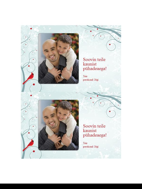 Lumehelbega pühade fotokaardid (kaks tükki lehel)