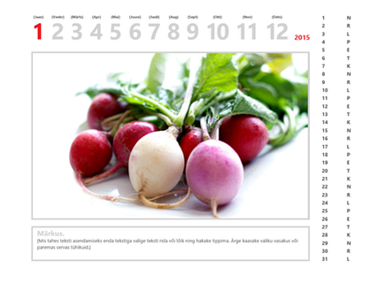 2015. a fotokalender