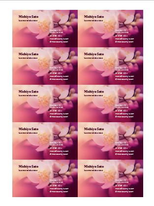 Käyntikortit (valokuva kukasta)