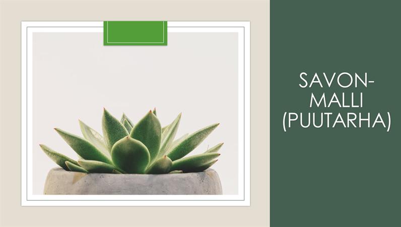Conception de savon jardin
