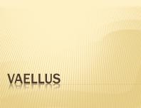 Vaellus