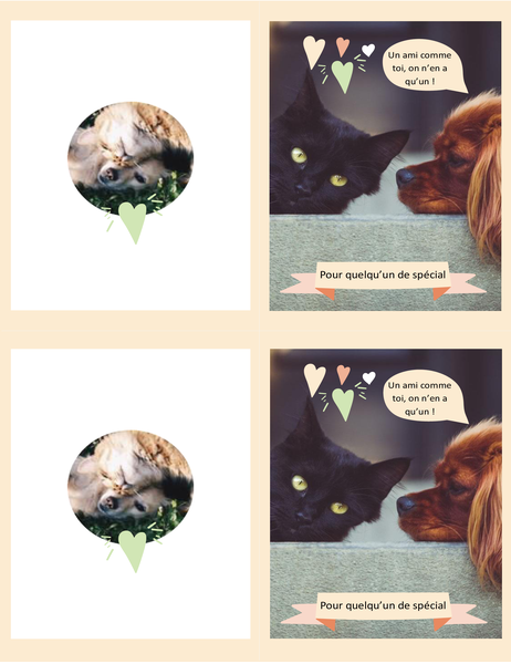 Carte ordinaire Chatons et chiots