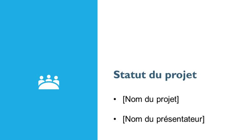 Project status report presentation