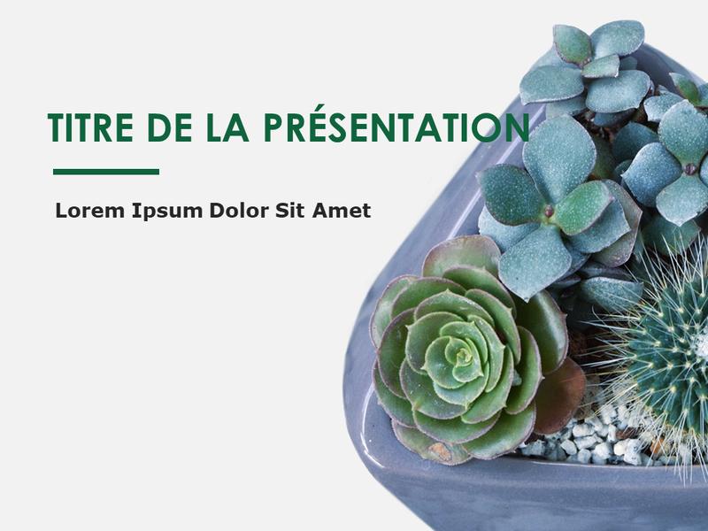 Diapositives de conception Botanique