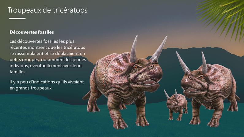 Triceratops - Le dinosaure à trois cornes