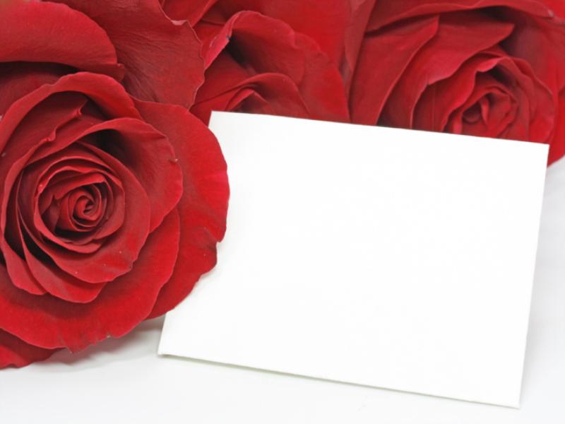 Thème Saint Valentin - Roses rouges