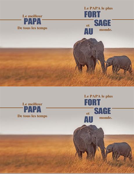 Carte de Fête des pères Éléphant sage