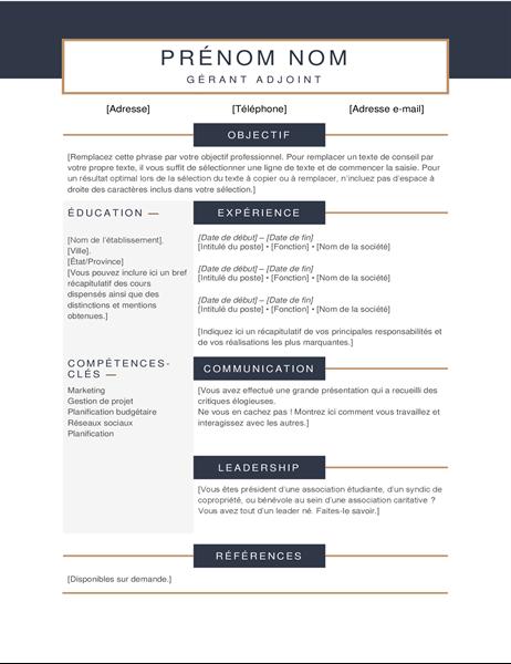 CV minimaliste