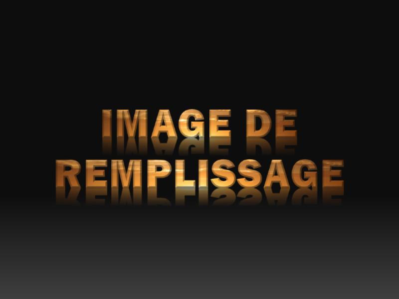 Texte rempli avec une image et se reflétant