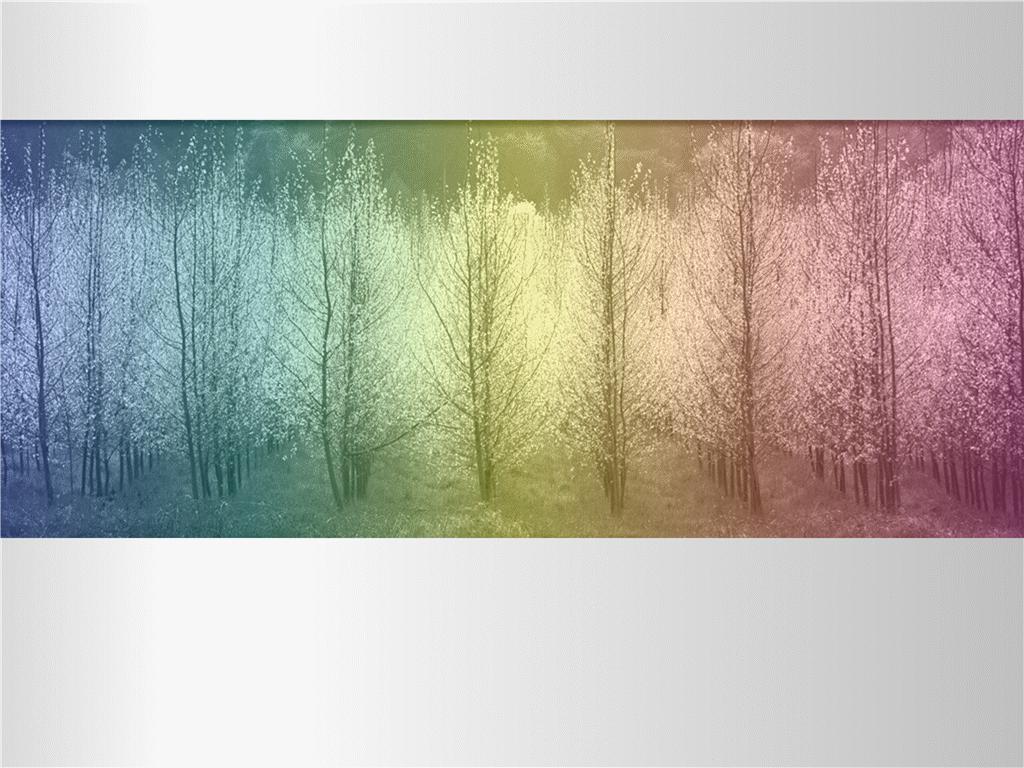 Image d'arbres avec une teinte à plusieurs couleurs
