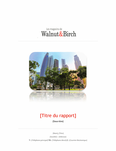 Rapport commercial (6pages)