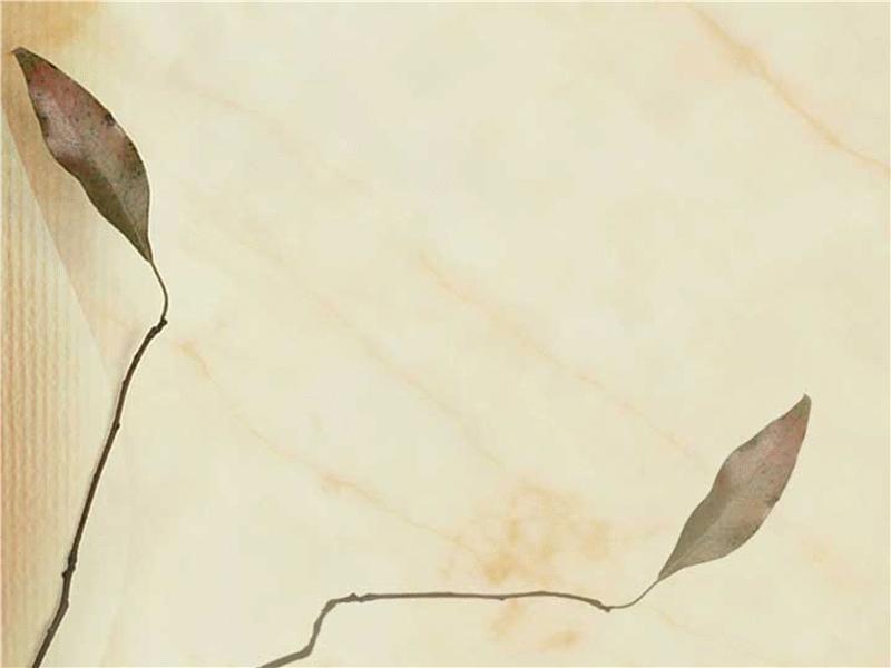 Modèle avec motif de feuilles pressées